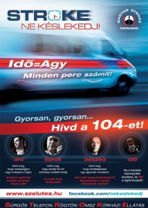 stroke_kampany_2012_flyer
